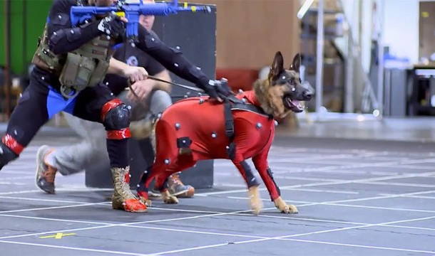 call-of-duty-riley-dog-motion-capture
