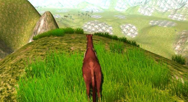 Cliffhorse_2