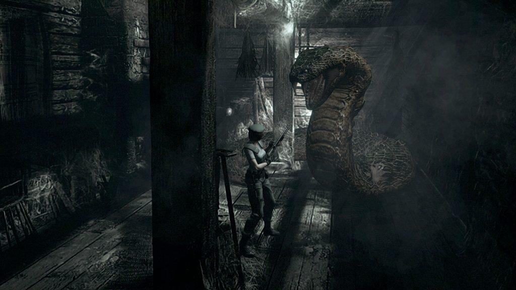 Resident Evil HD 12