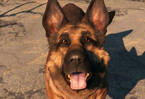 River... Ο σκύλος που αποτελεί πηγή έμπνευσης για το Fallout 4!