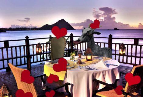 Goat Simulator + I Am Bread... εδώ υπάρχει ένας έρωτας μεγάλος!
