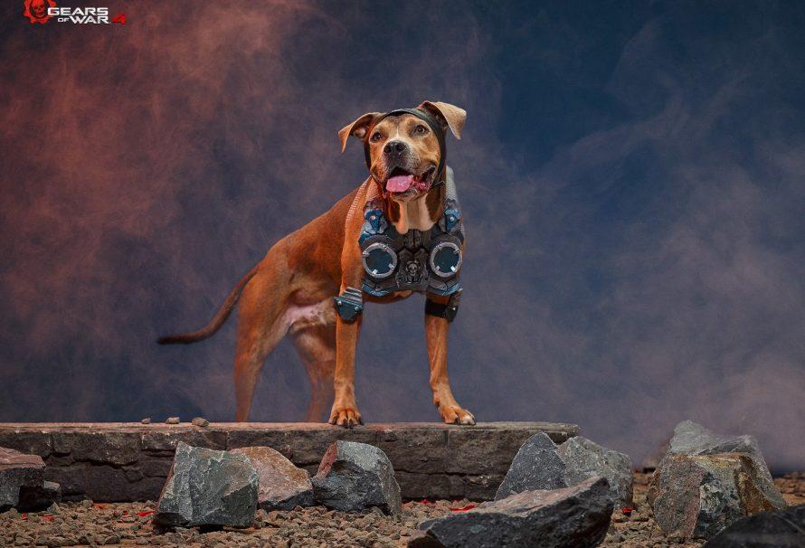 Σκυλίσιο… cosplay με την σφραγίδα της Microsoft και του Xbox!